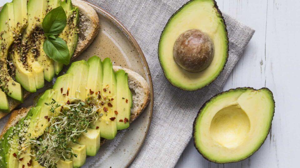 Como plantar abacate – Maneiras de germinar a semente e cultivar o fruto