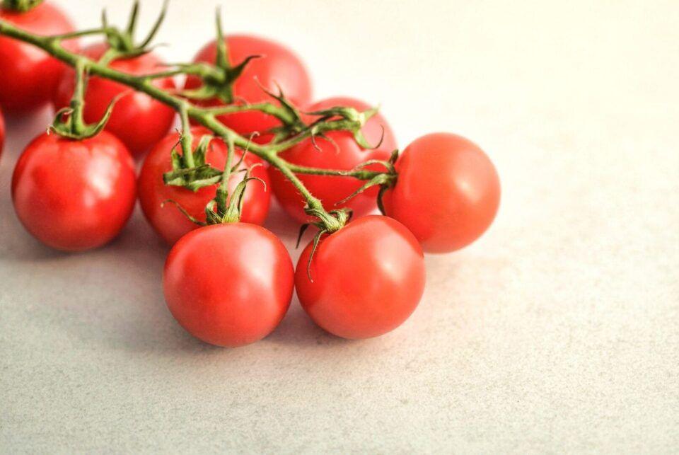 Como plantar tomate-cereja – Formas de cultivar o fruto orgânico em casa