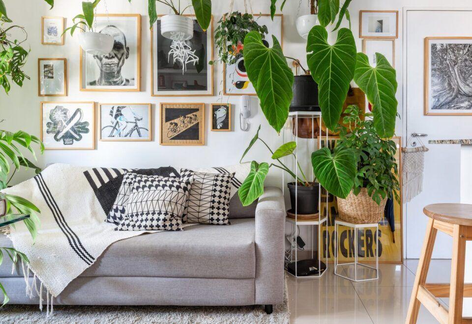 Plantas para apartamento – Opções para decorar ambientes internos