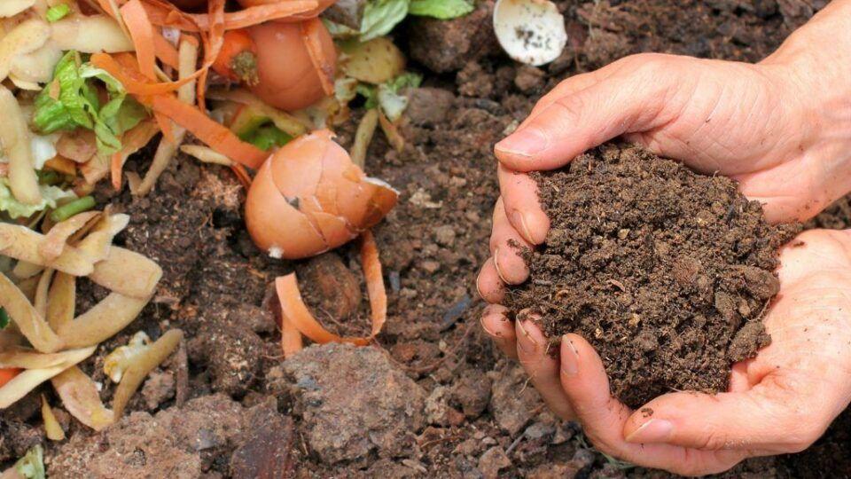 Bokashi – Função desse tipo de fertilizante e como prepará-lo