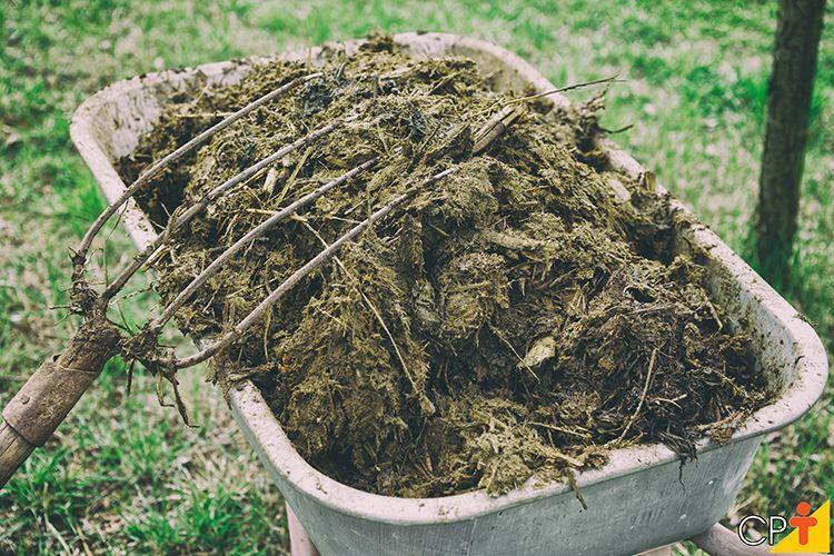 Fertilizantes orgânicos: o que são e os principais tipos de fertilizantes