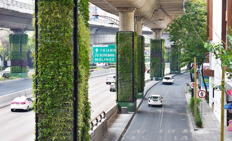 Jardins verticais: vantagens, cuidados e tipos de jardins verticais