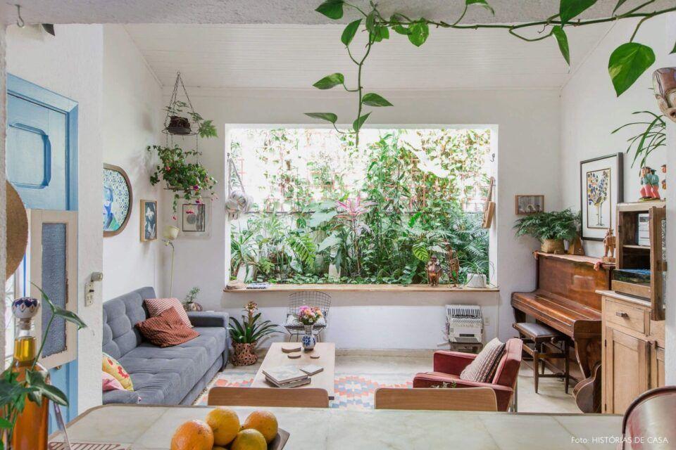 Plantas pendentes – Espécies ideais para decoração suspensa