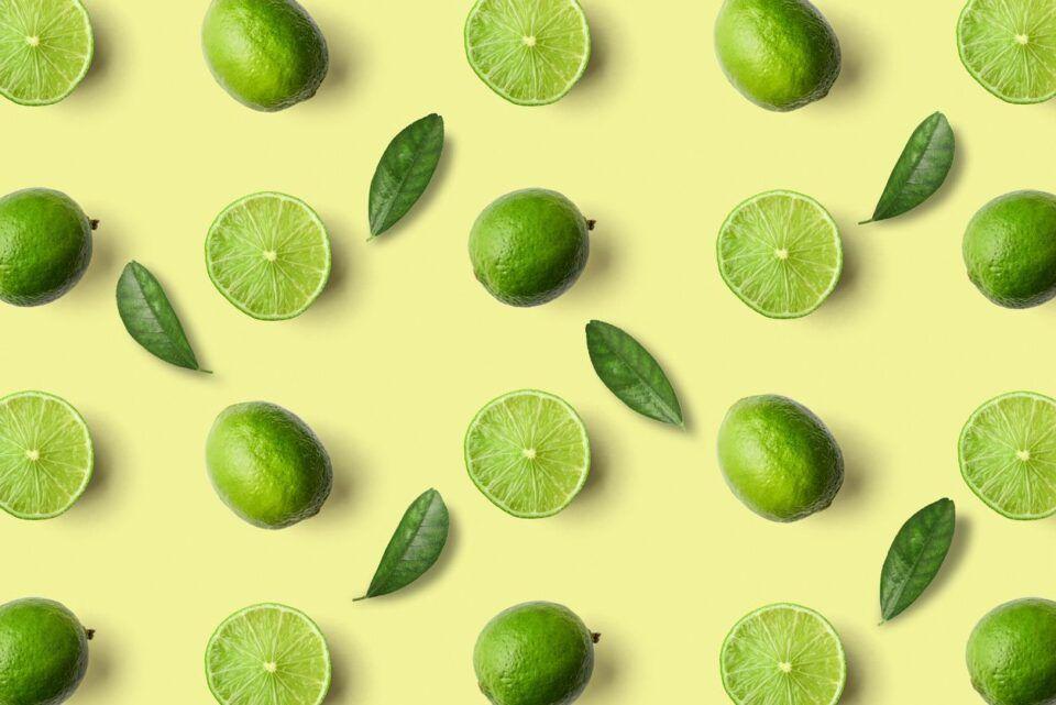 Como plantar limão – Fazendo plantio com sementes ou enxertia