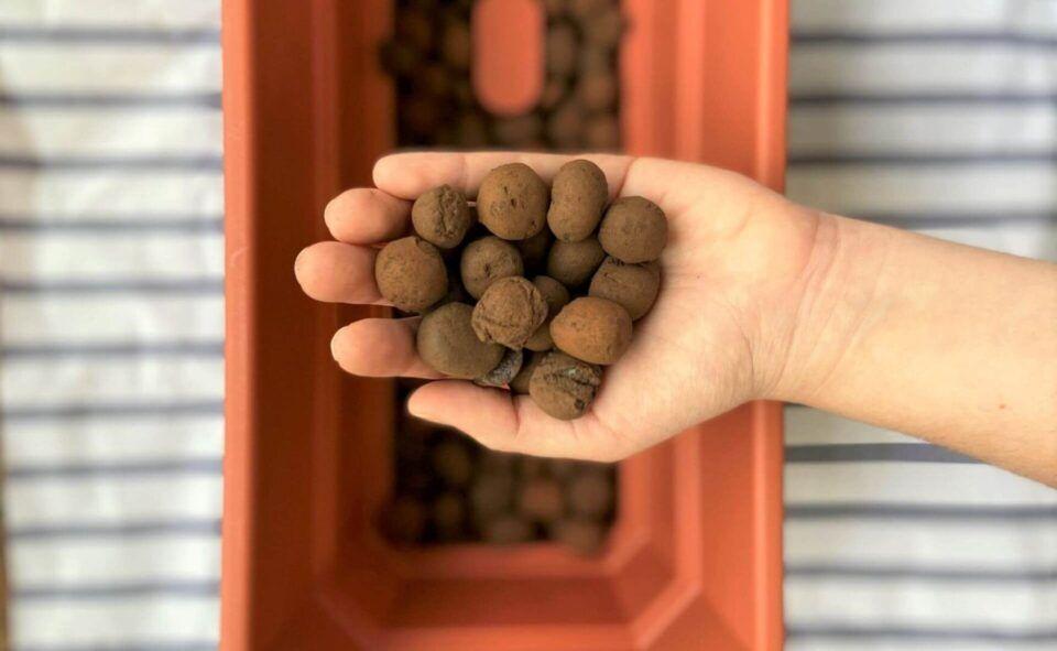 Argila expandida – O que é e como utilizar esse item na jardinagem