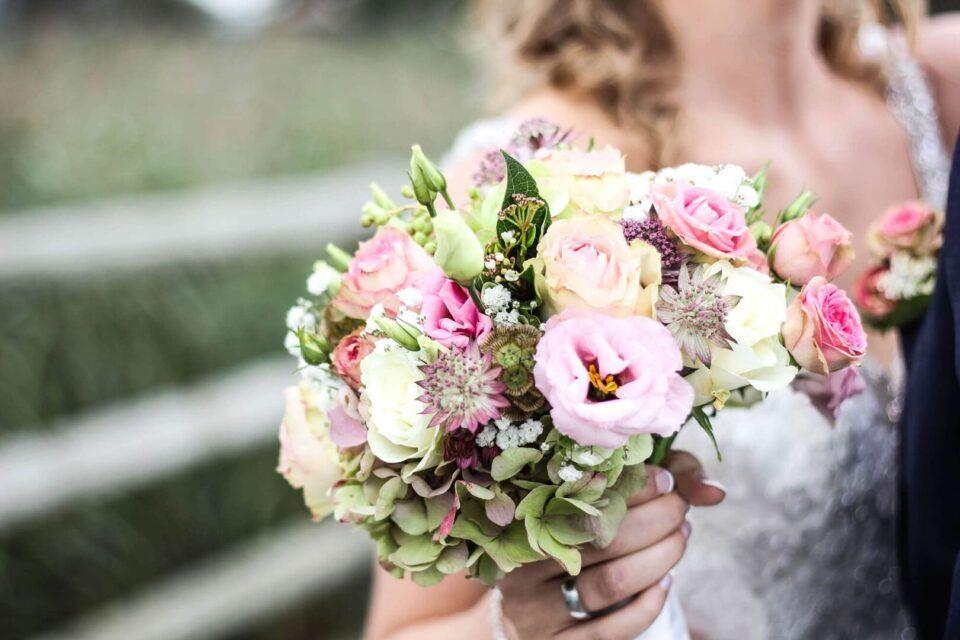 Flores românticas: opções para presentear ou ter em casa